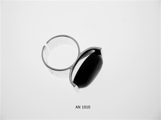 AN 1010
