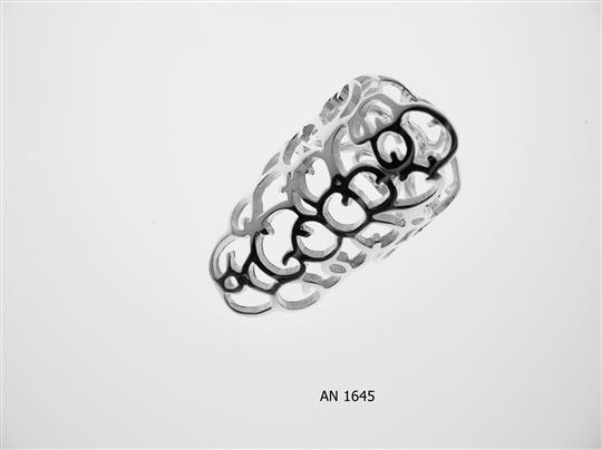 AN 1645
