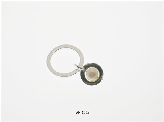 AN 1663