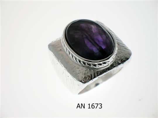 AN 1673